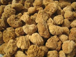 Naturgreen® Natural Sea Sponges